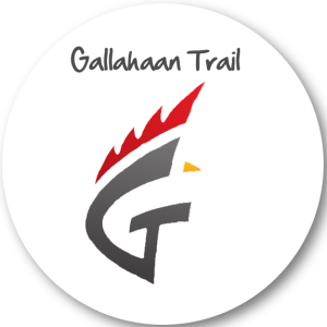 gallahann-logo-15x15-rd-300x300